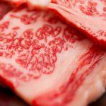 【あさイチ】牛ロースとれんこんの甘辛煮の作り方。中嶋貞治シェフが教える絶品牛肉レシピ(12月10日放送)