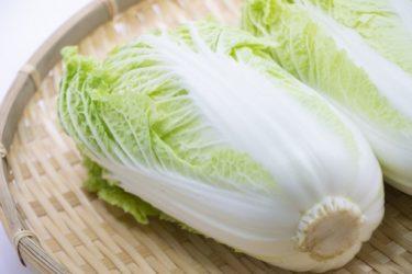 旨味と甘みがたっぷりの白菜レシピ