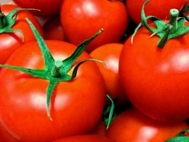 トマト丸ごとサラダ